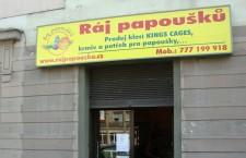 Ráj papoušků, jediný specializovaný zverimex v Praze, končí. Zůstane jen e-shop