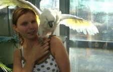 Výstavu exotického ptactva v Praze odstartovalo vypouštění afrických kruhooček