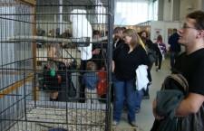 Letošní výstava Exotika 2012 v Lysé bude bez tradiční prodejní burzy ptactva