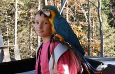 Bodyguard pro volné létání s žakem a horské túry s araraunami po Jeseníkách