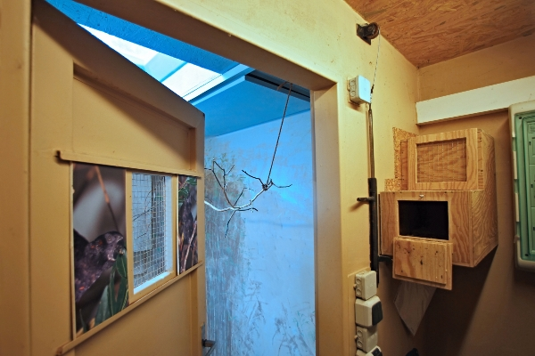 Ukázka umístění hnízdní budky vně samotnou ubikaci ptáků. Vchod do vnitřní voliéry je hned vedle, v horní části dveří je kontrolní otvor. (Foto pro Ararauna.cz: Tomáš Kubelka)