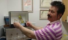 Češi na světovém šampionátu exotického ptactva COM 2020 v Portugalsku? 11 vystavovatelů veze 116 ptáků