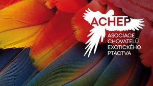 ACHEP
