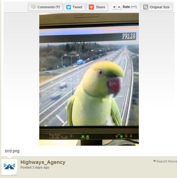 Alexandr malý na monitoru britské dopravní agentury. Snímek instituce zveřejnila na svém účtu na Twitteru.