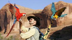 Chris Biro (Foto: Birdrecoveryinternational.com)