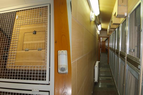 Hnízdní bouda pro ary s kontrolním otvorem a obslužná chodba zázemí voliér pro aratingy (Foto: Jan Sojka, Nová Exota)