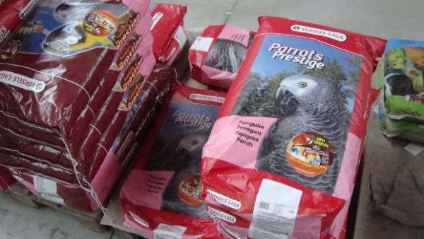 Kde nakupovat krmivo pro papoušky během karantény? Zverimexy i e-shopy fungují, ale s omezením