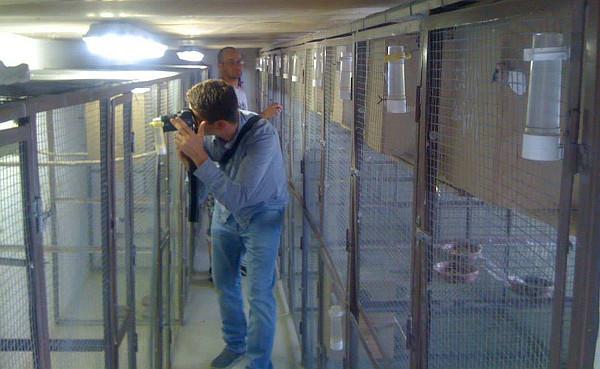 V prvním patře chovatelského zařízení, kde hnízdí chovné páry (Foto: Jan Potůček, Ararauna.cz)
