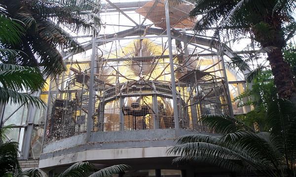Velké ary mohou návštěvníci vidět pouze na dálku ve stálé expozici KPEP v prvním podlaží nad hlavním vchodem do skleníků Botanické zahrady (Foto: Jan Potůček, Ararauna.cz)