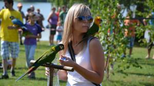 Den papoušků na Krásném u Šumperka (Foto: archiv Petry Horákové)