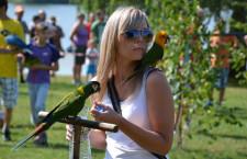 Přehled ptačích burz a výstav pro víkend 31. července až 2. srpna 2015