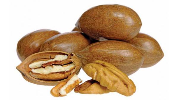 Pekanové ořechy: vynikající zdroj vápníku a antioxidantů pro papoušky