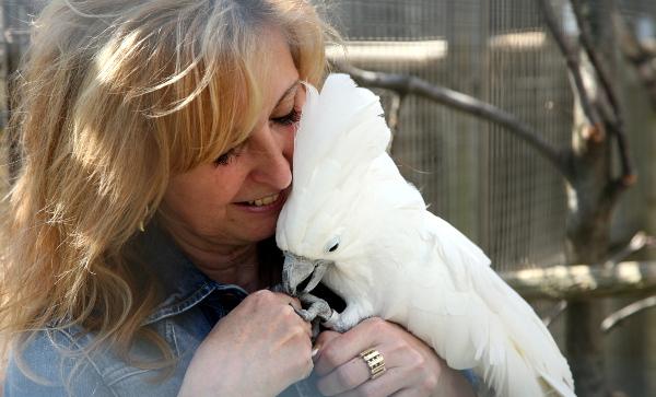 Ředitelka bošovické papouščí zoo s ochočeným kakaduem bílým (Foto: archiv Hany Škrhákové Pádkové)