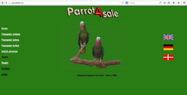 Tom_Parrot4sale