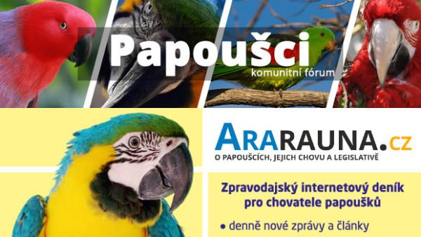 Ararauna.cz a Papoušci.net spojují síly. Vzniklo diskusní fórum pro slušné chovatele