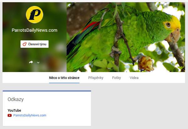 Profil webu ParrotsDailyNews.com na Google+. Najdete ho na adrese https://plus.google.com/b/100235526533131896487/112308999477031319479/posts