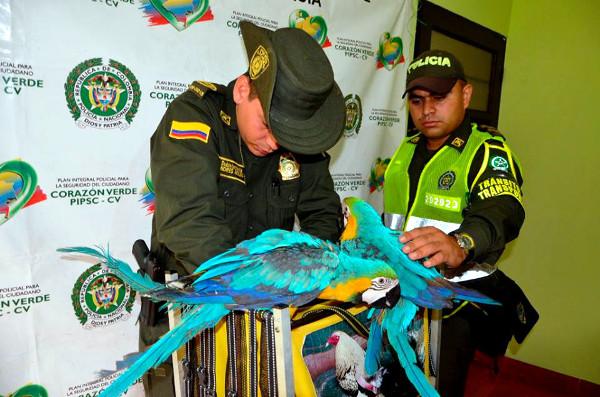 Policisté se úspěšnou akcí pochlubili na tiskové konferenci (Foto: Kolumbijská národní Policie)