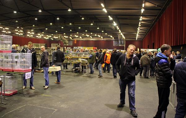 Pohled do větší z dvou prodejních hal ve Zwolle (Foto: Jan Potůček, Ararauna.cz)