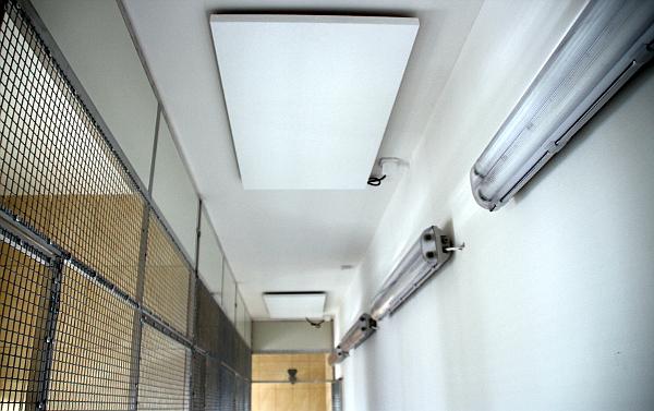 Umístění sálavých panelů na stropě nad obslužnou chodbou v zázemí voliér (Foto: Jan Potůček, Ararauna.cz)