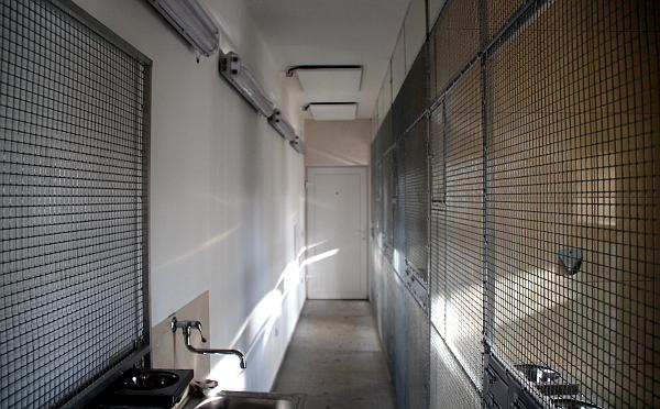 Celkový pohled na vnitřní část voliér se sálavými panely na stropě. Třetí panel je mimo záběr. (Foto: Jan Potůček, Ararauna.cz)