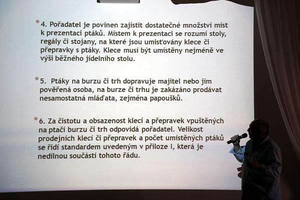 Ministerstvo zemědělství si do pravidel prosadilo zákaz prodeje neodstavených mláďat papoušků (Foto: Jan Potůček, Ararauna.cz)