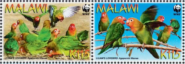 Agapornisové růžohlaví jsou v Malawi nesmírně populární, mají dokonce i vlastní poštovní známky (Foto: stamprightthere.blogspot.com)