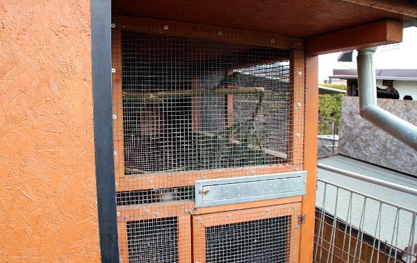 Chovné zařízení pro papoušky červenočapkové (Foto: Jan Potůček, Ararauna.cz)