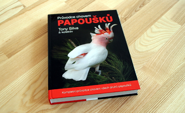 Na titulní straně mohl být i lori mnohobarvý, nakonec vyhrála verze s kakaduem inka (Foto: Jan Potůček, Ararauna.cz)