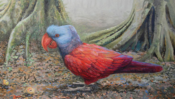 Jsou moc agresivní, popisuje deník ze 17. století vyhynulé papoušky širokozobé na Mauriciu