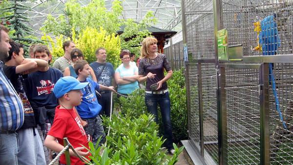 Papouščí zoo Bošovice otevře 13. června nový pavilon amazoňanů. Slibuje 10 až 12 druhů