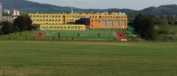 Ideálním místem pro výcvik volného letu papoušků je školní hřiště (Foto: Zdeněk Krňávek)