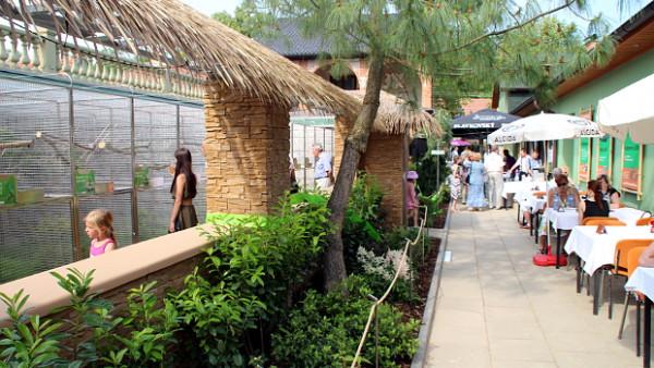 Papouščí zoo Bošovice zdvojnásobila svou plochu, otevřela nový pavilon amazoňanů