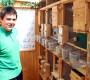 Na návštěvě u Martina Papače, specialisty na chov mutačních neofém modrohlavých