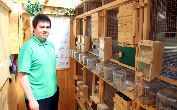 Martin Papač v jednom ze svých chovných zařízení pro mutační neofémy modrohlavé (Foto: Jan Potůček, Ararauna.cz)