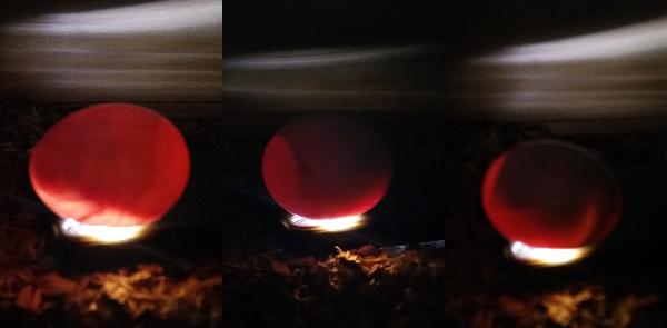 Prosvěcování vejce 16, 19 a 22 dní po snesení (Foto: Zdeněk Krňávek)