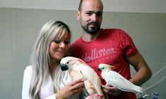 Zuzana a Martin Černí: Domácí mazlíčci se nám osvědčili v chovu, ať už šlo o ary nebo kakaduy