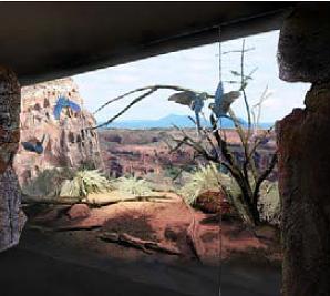 Vizualizace budoucí voliéry arů kobaltových v Rákosově pavilonu pražské zoo (Zdroj: Výroční zpráva Zoo Praha 2014/Ateliér A.N.D.)