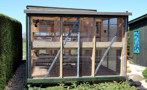 Pro některé papoušky jsou dřevěné voliéry vhodnější než zděné, například pro neofémy a většinu australských druhů (Foto: Jan Potůček, Ararauna.cz)