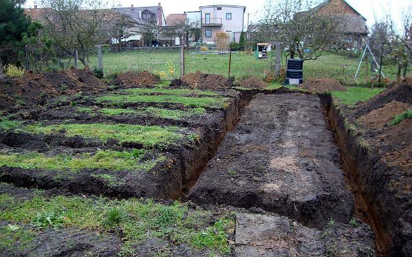 Bez stavebního povolení nemůžete začít kopat ani základy voliér (Foto: Jan Potůček, Ararauna.cz)