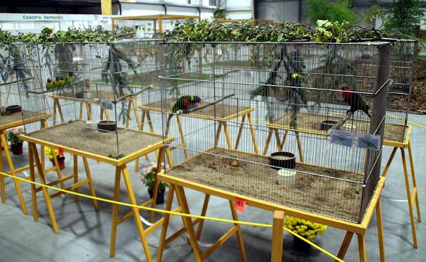 Klece pro menší druhy papoušků (Foto: Jan Potůček, Ararauna.cz)