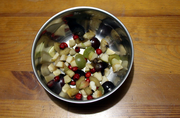Čerstvý hloh ve směsi čerstvého ovoce pro ary ararauny (Foto: Jan Potůček, Ararauna.cz)