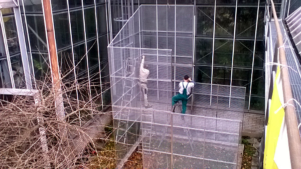 Průběh stavby venkovní voliéry pro papoušky v Botanické zahradě na pražském Albertově (Foto: archiv Jana Barvíka)