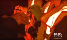 Záchrana papouščího páru z hořícího domu proslavila americké hasiče po celém světě