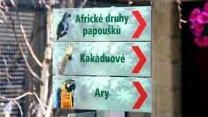 Zoo Bošovice ukazatele