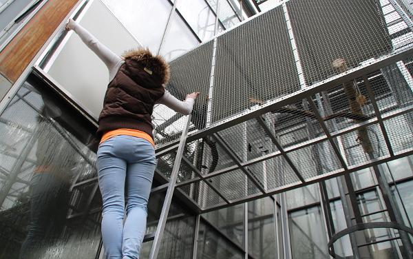 Aneta Vychytilová ze společnosti Laguna otevírá spojovací dvířka do venkovní voliéry pro papoušky v Botanické zahradě v Praze na Albertově (Foto: Jan Potůček, Ararauna.cz)