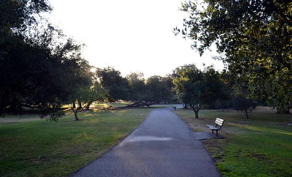 Irvine Park je udržovaný městský park, ke kterému přiléhají divoké lesy (Foto: Antonín Donát)
