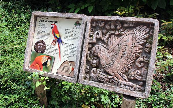 Ary arakangy získala zlínská zoo od partnerské zoologické zahrady v mexickém Pueblu (Foto: Jan Potůček, Ararauna.cz)
