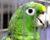 Přehled ptačích burz a výstav pro víkend 21. až 23. dubna 2017