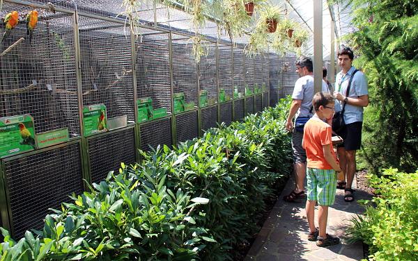 Zahradní slavnost přilákala do Papouščí zoo desítky návštěvníků. Letos jich do Bošovic zavítalo již 12 tisíc. (Foto: Jan Potůček, Ararauna.cz)