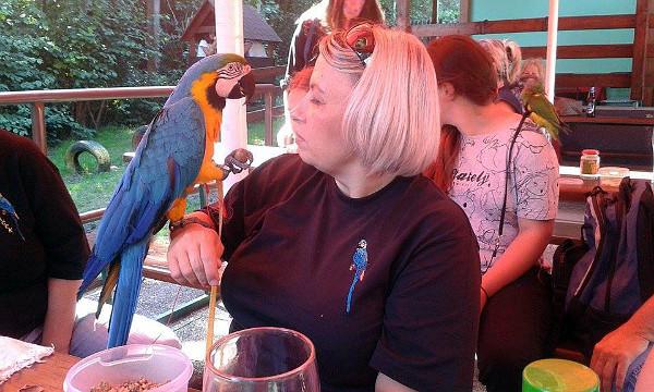 Restauraci na Zátiší zcela ovládli papoušci (Foto: Jarmila Tomečková)